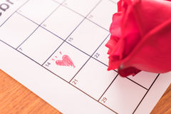 è aumentato sul calendario con la data del da del biglietto di S. Valentino del 14 febbraio Immagine Stock