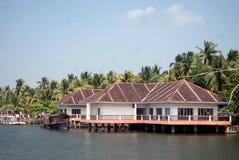 È nello stagno nel Kerala, L'India immagine stock libera da diritti