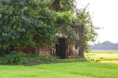 È un tempio, situato in mezzo al campo fotografia stock