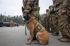 25ème anniversaire du service de sécurité de l'Ukraine Images stock
