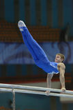 5ème Championnats européens en gymnastique artistique Images stock