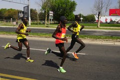 26ème course de marathon internationale de Belgrade Photo stock
