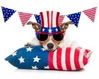 4ème du chien de Jour de la Déclaration d'Indépendance de juillet Image stock