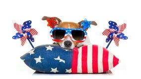 4ème du chien de Jour de la Déclaration d'Indépendance de juillet Photo libre de droits