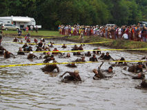 18ème Marine Mud Run annuelle - puits de boue Photographie stock libre de droits