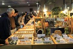 23ème Toronto annuel Jem et exposition minérale Image libre de droits