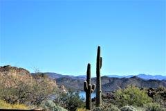 4ème tour annuel de moto pour les chevaux sauvages de la rivière Salt, Arizona, Etats-Unis photo libre de droits