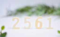 Ère bouddhiste 2561 de célébration Photographie stock libre de droits
