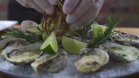 食品组成和设计 牡蛎烘烤用乳酪、草本和石灰在板材关闭 海鲜背景 股票录像