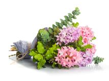 风信花与绿色叶子的桃红色花 免版税库存图片