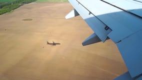 飞机进来降落在机场,飞机视图的着陆从反光板的 股票视频