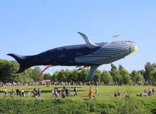 风筝节日  有在天空蔚蓝的许多色的风筝 免版税库存照片