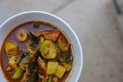 鱼器官酸汤用blured背景南泰国著名食物 免版税库存照片