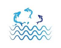 鲤鱼在白色背景的koi设计 敌意 鱼象 水下 层状的容易编辑可能 库存例证