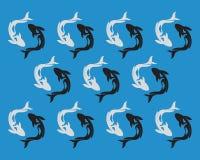 鲤鱼在白色背景的koi设计 敌意 鱼象 水下 层状的容易编辑可能 向量例证