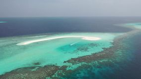 鸟瞰图 热带海的海岛 股票录像