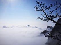 黄山的雾凇 The morning of Huang Mountain royalty free stock photo