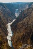 黄石,怀俄明,美国的大峡谷 免版税库存图片