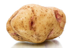 Één aardappelknol Stock Foto's