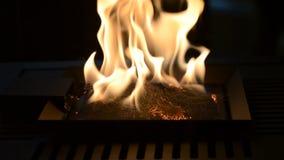 Één Biofireplace-brandwond op ethylalcoholgas stock videobeelden