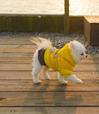 Één die het gele klerenpuppy spelen dragen Royalty-vrije Stock Fotografie