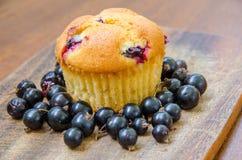 Één enkele citroenmuffin met kersen en blackcurrant Stock Fotografie