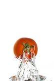 Één enkele tomaat die uit het water springt royalty-vrije stock fotografie