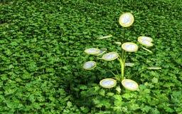 Één euro geld weinig boom in het gras Stock Foto