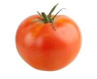 Één geïsoleerdeg tomaat Stock Fotografie