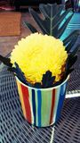 Één gele bloem Royalty-vrije Stock Foto's