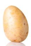 Één gescheiden verse potatoe. stock afbeelding