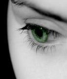 Één groen Oog Stock Foto's