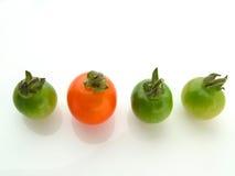 Één groen rood drie Stock Fotografie
