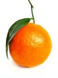 Één grote sinaasappel Stock Foto's
