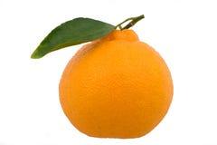 Één hallabong (Koreaanse sinaasappel) met één groen blad Stock Foto's