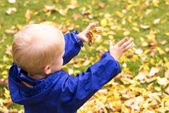 Één jaarpeuter het spelen met geel gebladerte in een de herfstpark Stock Fotografie
