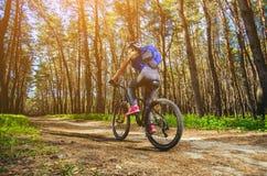 Één jonge vrouw - een atleet in een helm die een bergfiets buiten de stad berijden, op de weg in een pijnboombos stock foto