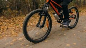 Één Kaukasische de fietsweg van kinderenritten in de herfstpark Het meisje die zwarte oranje cyclus in bosjong geitje berijden ga stock foto