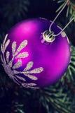 Één Kerstmisbal die op een takje overhandigen Royalty-vrije Stock Foto