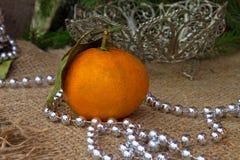 Één mandarin Royalty-vrije Stock Fotografie