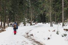 Één mensengangen door het bos van de de wintersneeuw stock fotografie