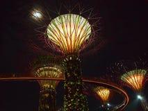 Één nacht in Singapore Stock Afbeelding