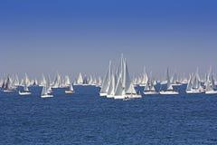 Één oft Grootste regata van de zeilboot in de wereld stock foto