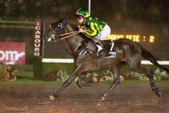 Één Paardenkoers op een regenachtige renbaan royalty-vrije stock afbeelding