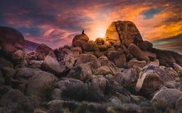 Één Persoonszitting op een Cluster van Keien die op een Kleurrijke Woestijnzonsondergang in Joshua Tree National Park letten royalty-vrije stock foto