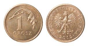 Één Pools muntstuk Stock Afbeeldingen