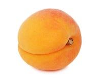 Één rijpe (geïsoleerde) abrikoos Royalty-vrije Stock Foto