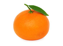 Één rijpe mandarin met blad () Stock Foto