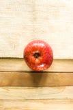 Één rode appel met goede textuur Royalty-vrije Stock Afbeeldingen