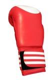 Één rode geïsoleerdec bokshandschoen, Stock Foto